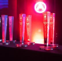 SAE Alimni Award 2015